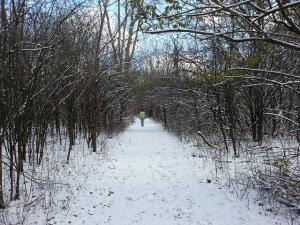 woman walks down snow covered path surrounded by trees