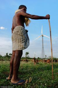 Shepherd in India with windmill and goats